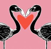 Illustration of two flamingos