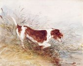 John Constable A dog watching a rat in the water at Dedham 1831 Pencil and watercolour on paper © Victoria and Albert Museum, London
