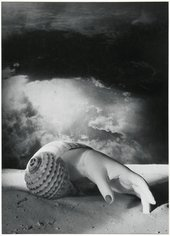 A black and white image of a human hand with painted fingernails emerging from a conch shell. The shell is on a sandy ground and against a cloudy background.
