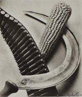 Tina Modotti Bandelier, Corn and Sickle 1927 The Sir Elton John Photographic Collection
