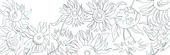 Colour in template of sunflowers