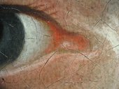 Fig.10 Detail at x8 of the sitter's right eye, showing the fawn coloured ground left visible to form a half-shadow between the inner corner and the highlight below it