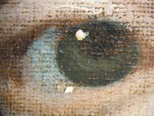Fig.12 Detail of the sitter's left eye at x8 magnification