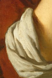 Fig.12 Detail of the brushwork in the sleeve
