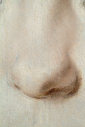 Fig.16 Detail of the sitter's nose