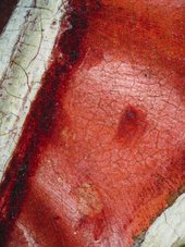 Fig.18 Detail of the red costume, photographed at x10 magnification