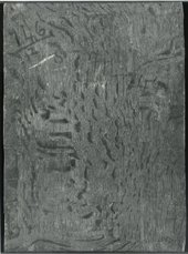 Fig.3 The back of the painting photographed in black and white