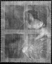 Fig.5 X-radiograph of Portrait of a Lady as a Shepherdess c.1670