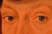 Fig.6 The sitter's eyes