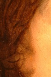 Fig.7 Macro-photograph of the edge of the face and the hair