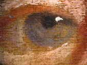 Fig.7 The sitter's left eye, photographed at x8 magnification, showing the economical brushwork and the ground left visible as a neutral tone. The striations in the ground are visible beneath the thin paint of the eye