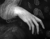Fig.9 Infrared detail of the sitter's right hand