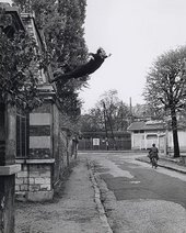 Fig 1 Yves Klein, Leap into the Void 1960