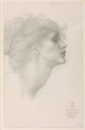 Detailed drawing of a woman's head in profile