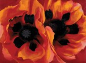 Georgia O'Keeffe Oriental Poppies 1927 The Collection of the Frederick R. Weisman Art Museum at the University of Minnesota, Minneapolis © 2016 Georgia O'Keeffe Museum/DACS, London