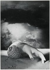 Black and white photograph of a hand and shell by Dora Maar