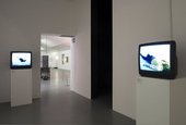 Bruce Nauman Bruce Nauman: Make Me Think Me Installation view two