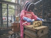 Carole Wright with Bankside Bees apiary at St John's Church Southwark