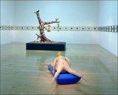 Turner Prize 2003, Chapman installation view
