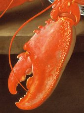 Charles Collins Lobster on a Delft Dish 1738 detail of a lobster claw