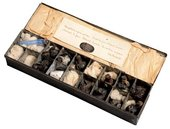 Constable's metal paint box c.1837 containing eleven paint bladders, a piece of white stone and a glass phial of blue pigment