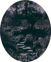 E. A. Hornel's garden Photograph in Scottish Country Life 1916
