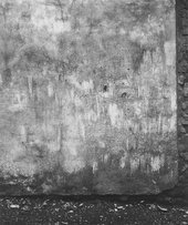Emila Medková Wall 1951