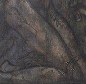 Detail of thigh under raking light from left