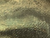 Micrograph showing the eyelid of Girl in a Chemise c.1905