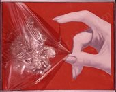 James Rosenquist Wrap II 1964