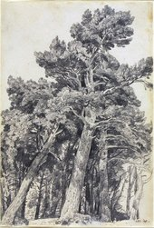John Constable Fir Trees at Hampstead 1820