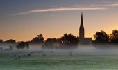 Salisbury Cathedral viewed from Harnham Water in 2013