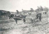 William Johnstone at Greenhead Farm in 1912