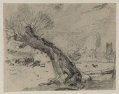 John Constable A Willow Stump 1821