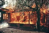 Larry Sultan and Mike Mandel, Untitled from Oranges on Fire 1975