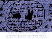 Susan Hiller The Curiosities of Sigmund Freud 2005, detail