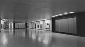 Installation view of The Collection of Mr and Mrs Ben Heller, Art Institute of Chicago, 1961, with Vir Heroicus Sublimis visible on the right
