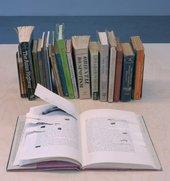 Simryn Gill Installation View (books)