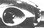 Fig.4 Detail of the jet engined car showing the air-intake