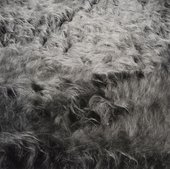 Harry Callahan Georgia Mountains 1988
