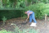 Abraham Cruzvillegas collecting soil from the Horniman Museum and Gardens