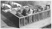Poyet Cat-Keyboard (Katzenklavier)