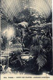 The Tropical House Jardin des Plantes