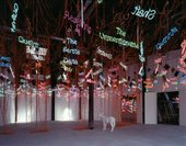 Installation view of Jason Rhoades My Madinah - in Pursuit of My Ermitage