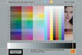 Kodak Q-60 input colour target