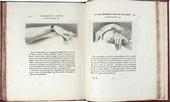 Engraved illustrations to J.C. Lavater Essays on Physiognomy