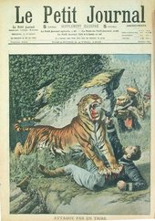 Attacked by a Tiger