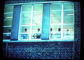 Lucy Gunning, Intermediate II 2001