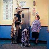 Marcus Coates Journey to the Lower World Beryl 2004