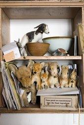 Mark Hearld rabbits and foxes